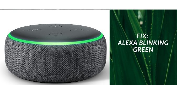 alexa flashing green light